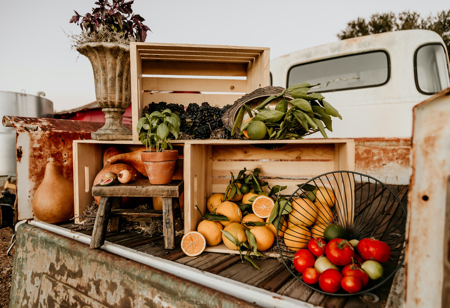 bed of a truck filled with crates of greenery and fresh fruit, oranges and pomegranates