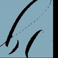 Bree Carroll logo