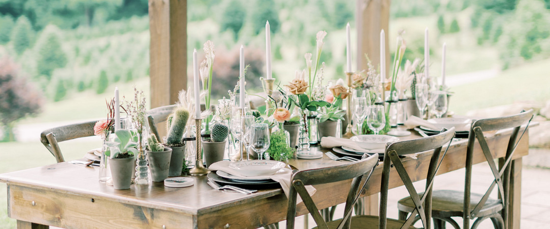 Cactus-Inspired Wedding Shoot in the Mountains