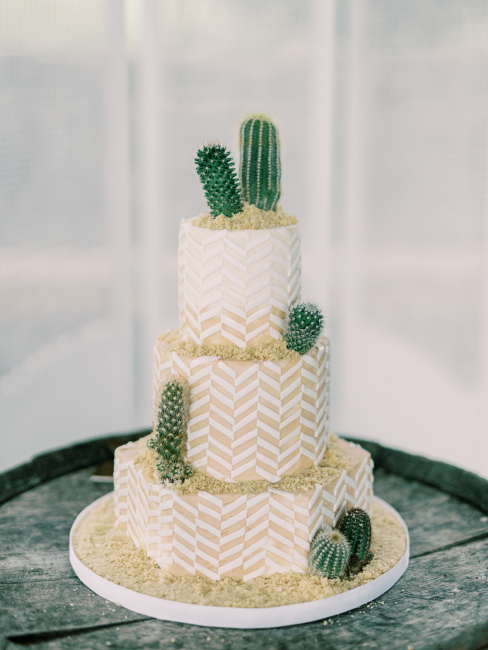 Beige Cake with Cacti and Sand