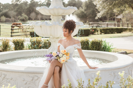 A Whimsical Editorial